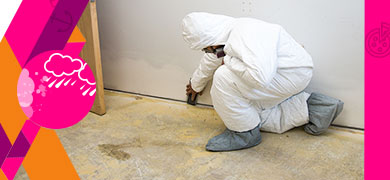 Mold & Flood Damages Restoration